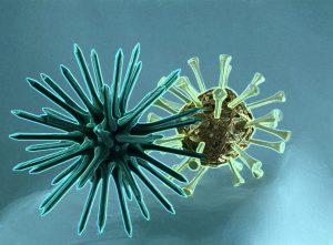 Corona -Virus - Mietrecht